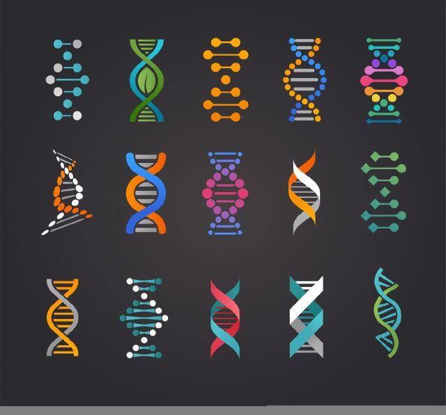 DNA Spirals - Analyse your DNA