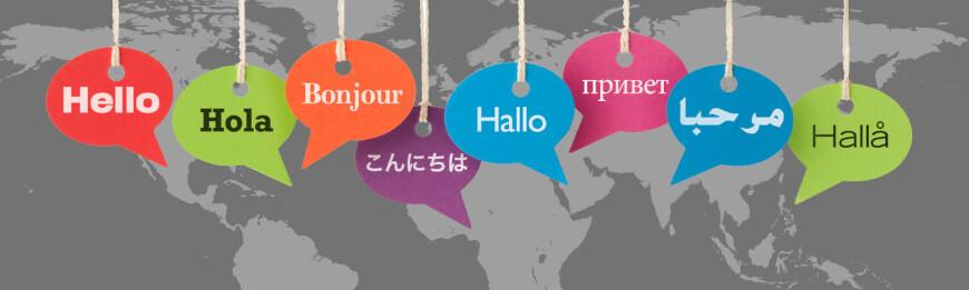 Languages - Future Skills