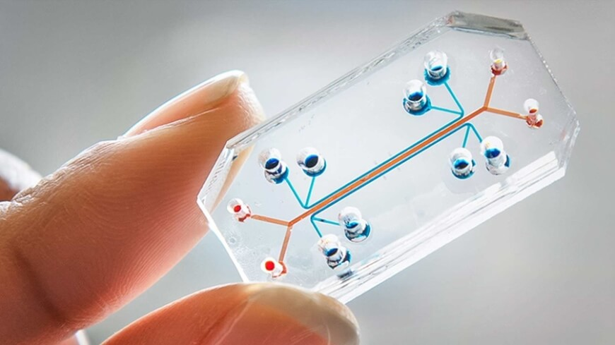 Organs on Chips - Clinical Trials