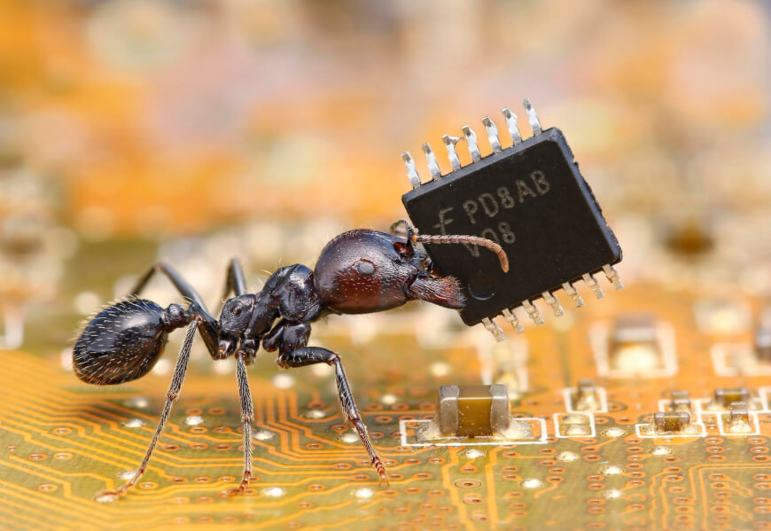 Ant with Microchip - Nanotechnology in Healthcare