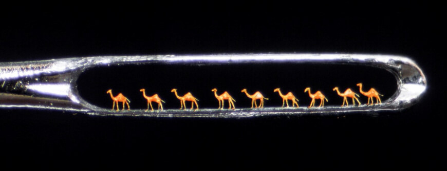 Miniature Camels - Nanotechnology in Healthcare
