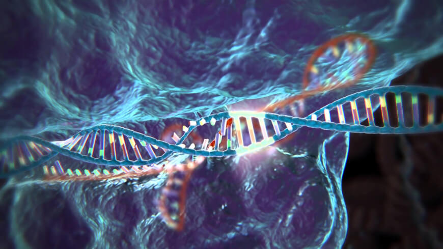 CRISPR genome editing method