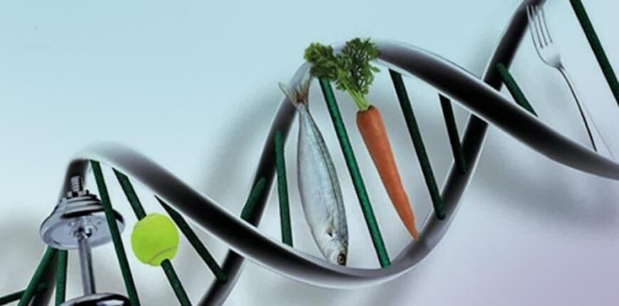Nutrigenomics - Future of Food