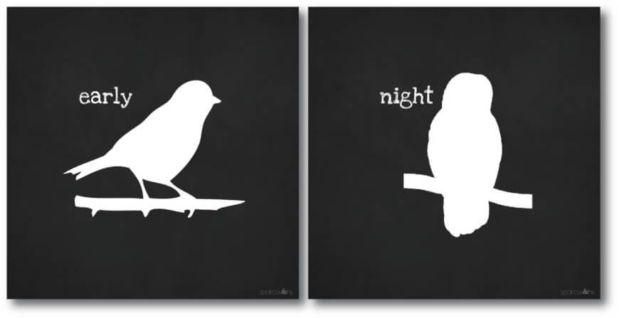 night owl vs early bird - sleep tracking