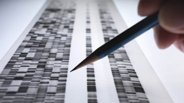 What Could You Do With Cheap Genome Sequencing Now?