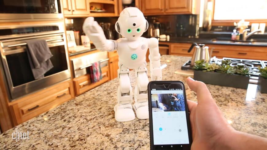 social companion robots