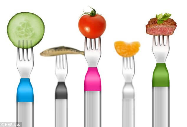 Slow Eating For Balanced Weight Management: The HAPIfork Review